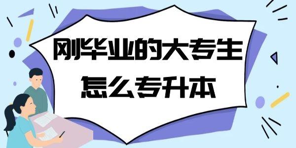 北京成人高考:刚毕业的大专生怎么专升本